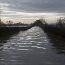 The road to Muchelney at the boat stop