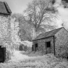 The old mill Buckland St. Mary